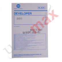 Developer 8938451 (DV310)